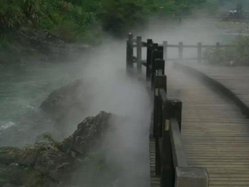 冷雾雾森设备